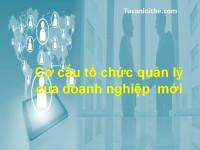 Cơ cấu tổ chức quản lý của doanh nghiệp mới