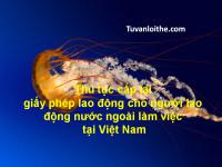 Thủ tục cấp lại giấy phép lao động cho người lao động nước ngoài làm việc tại Việt Nam