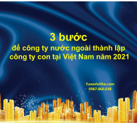 3 bước để công ty nước ngoài thành lập công ty con tại Việt Nam năm 2021
