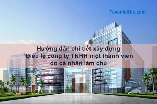 Hướng dẫn chi tiết xây dựng Điều lệ công ty TNHH một thành viên do cá nhân làm chủ